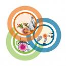 Printdesign · MittendrIn Berlin! Dokumentation 2010/11: Design und Druckabwicklung der Broschüre mit der Dokumentation des Wettbewerbsverfahrens 2010/11 von «MittendrIn Berlin! Die Zentren-Initiative«